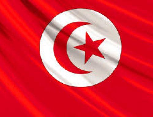 بيان جامعة الزيتونة على إثر العملية الإرهابية التي جدّت بمنطقة عين سلطان